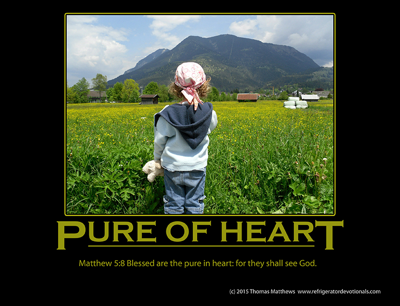 Pure of Heart: Matthew 5:8 Blessed are the pure in heart: for they shall see God.