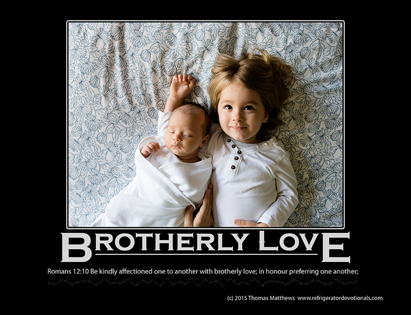 Brotherly Love: Romans 12:10 Be kindly affectioned one to another with brotherly love; in honour preferring one another;