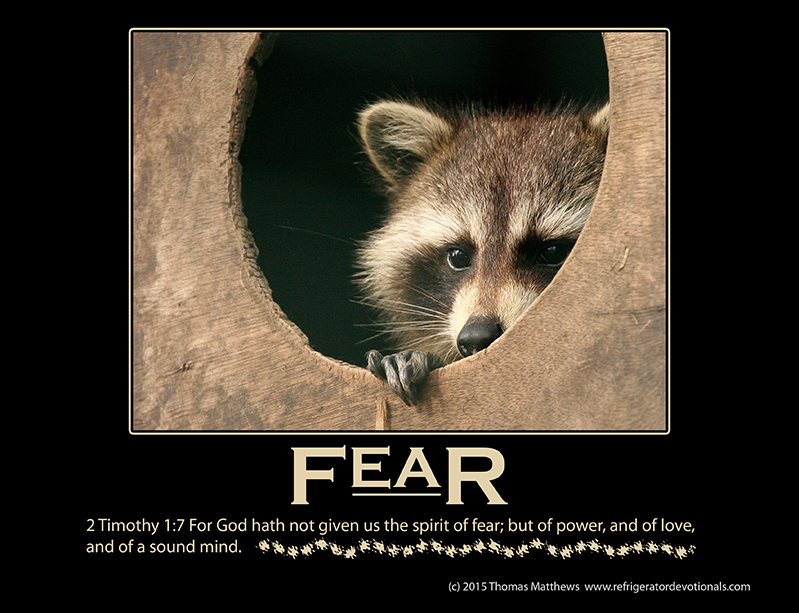 Fear: 2 Timothy 1:7 For God hath not given us the spirit of fear; but of power, and of love, and of a sound mind.