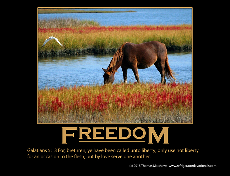 Freedom: Galatians 5:13 For, brethren, ye have been called unto liberty; only use not liberty for an occasion to the flesh, but by love serve one another.