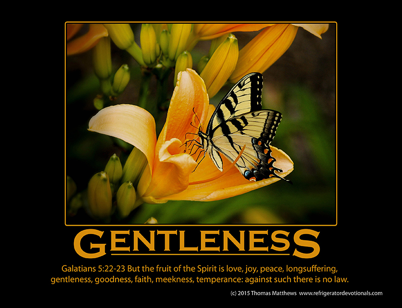 Gentleness: Galatians 5:22-23 But the fruit of the Spirit is love, joy, peace, longsuffering, gentleness, goodness, faith, meekness, temperance: against such there is no law.