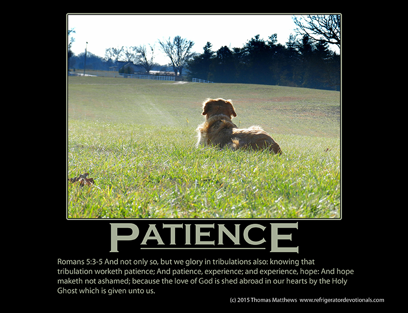 Patience: Romans 5:3-5 And not only so, but we glory in tribulations also: knowing that tribulation worketh patience; And patience, experience; and experience, hope: And hope maketh not ashamed; because the love of God is shed abroad in our hearts by the Holy Ghost which is given unto us.
