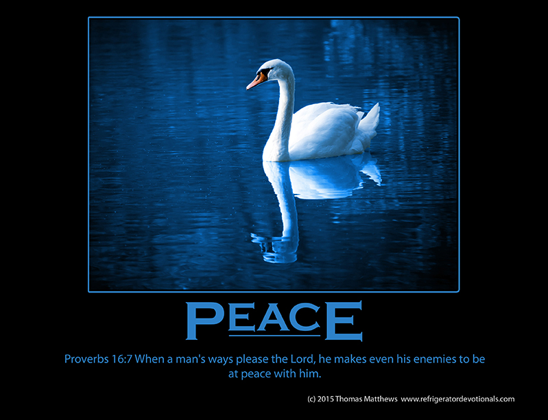Peace: Proverbs 16:7 When a man's ways please the Lord, he makes even his enemies to be at peace with him.