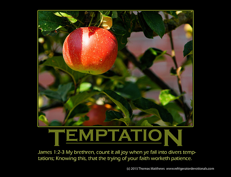 Temptation: James 1:2-3 My brethren, count it all joy when ye fall into divers temptations; Knowing this, that the trying of your faith worketh patience.